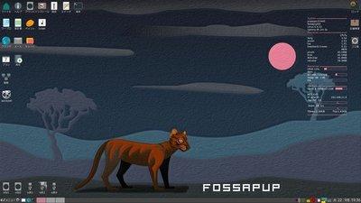 fossapup64.jpg